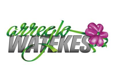Arreglo Watekes